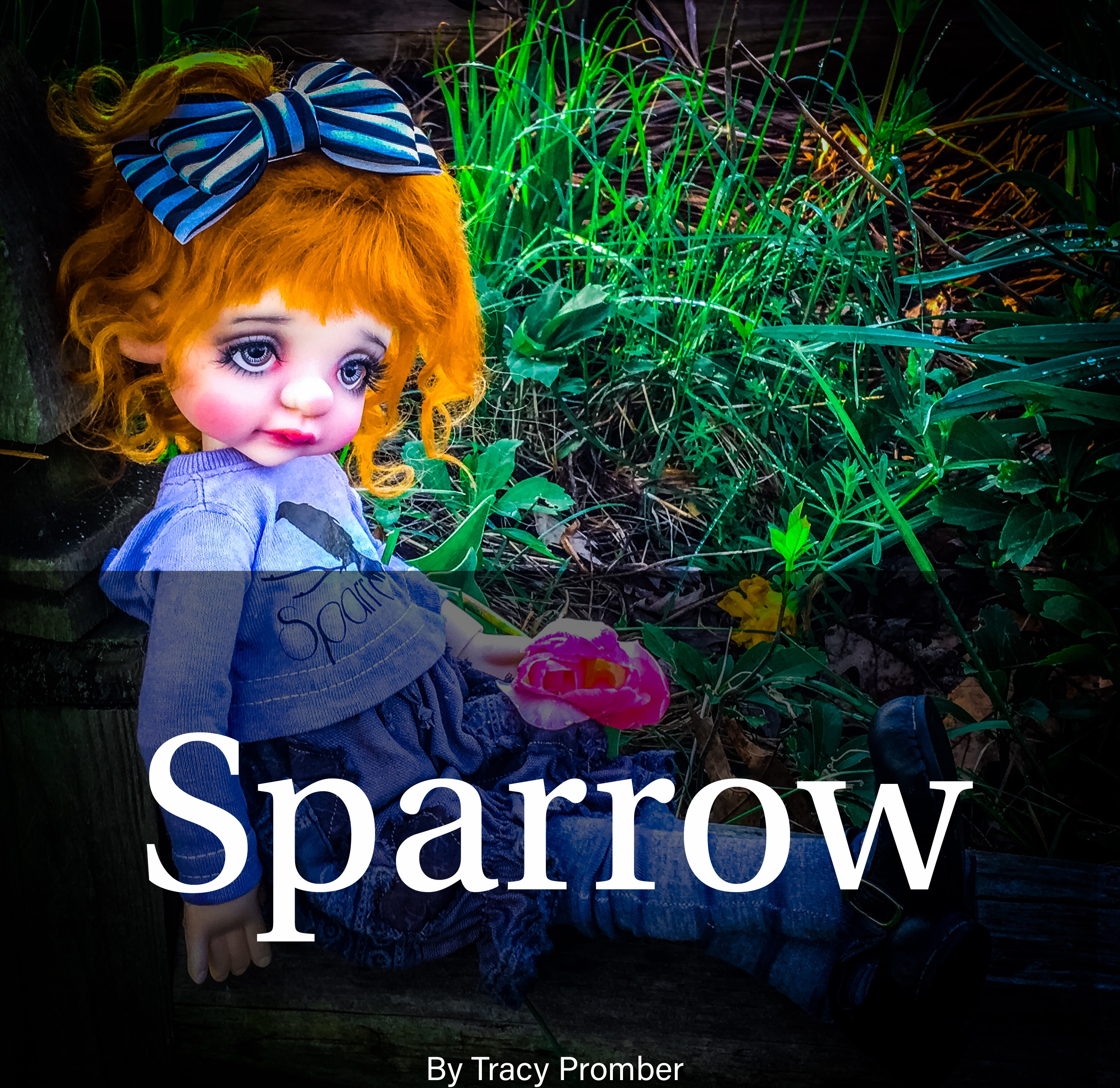 Sparrow by Tracy Promber