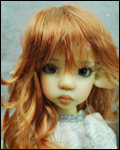Shaine Reddish Blonde 8/9
