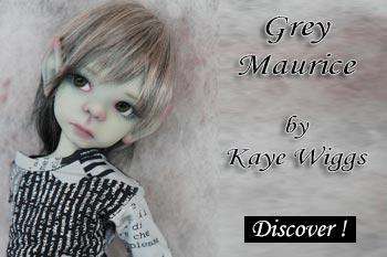 grey maurice by kaye wiggs